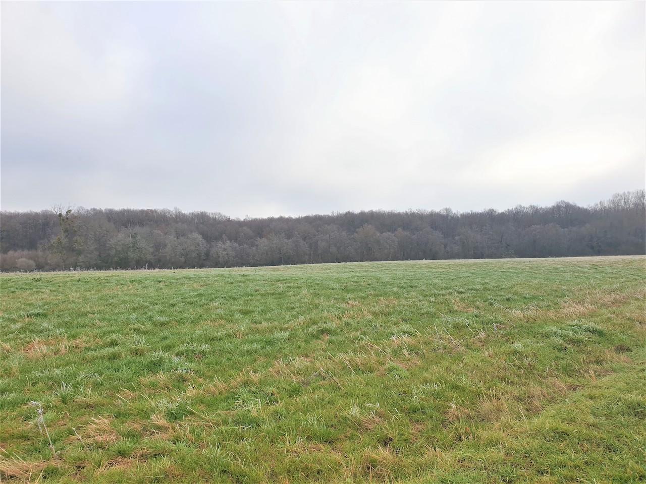 Terres Agricoles 36 ha