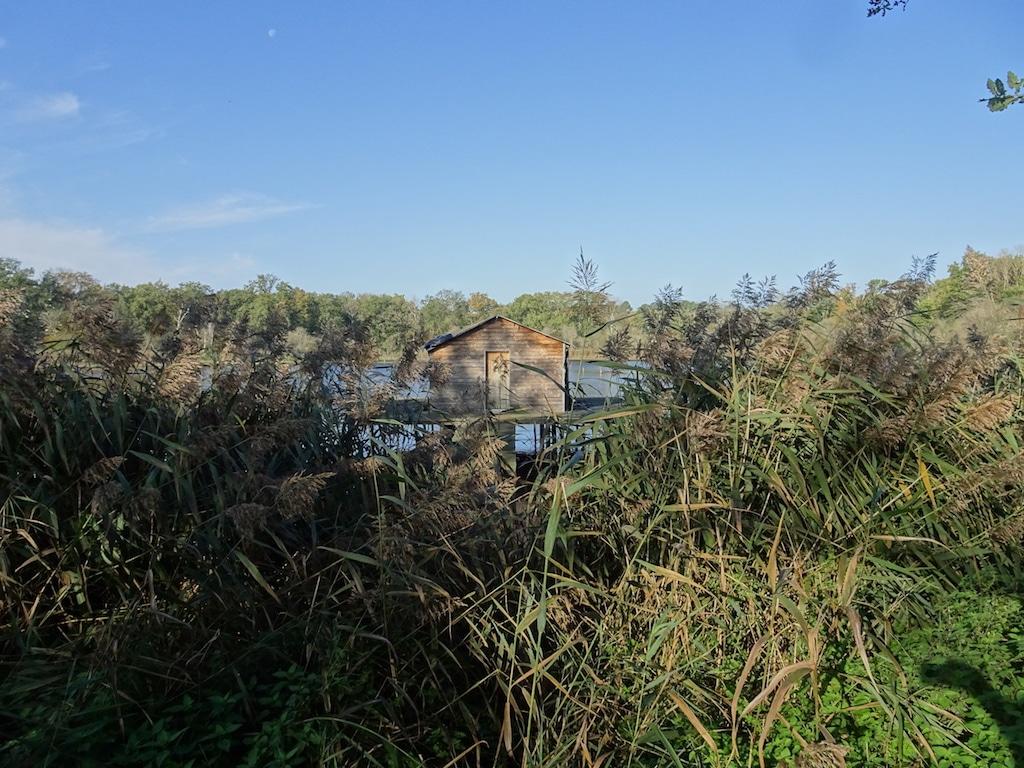 Propriété de Chasse & Agrément 186 ha