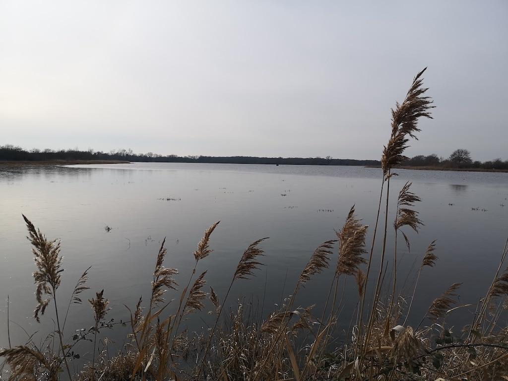 Propriété Pêche, Chasse & Agrément 80 ha