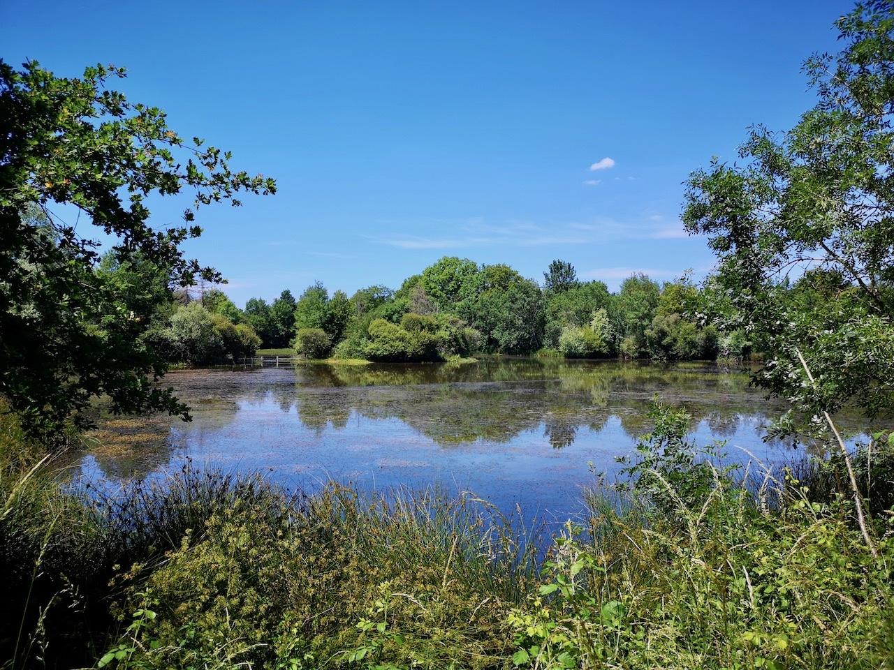 Propriété de Chasse, Pêche & Agrément 16 ha